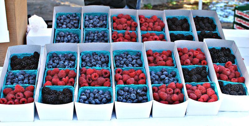 DSC_0152berries